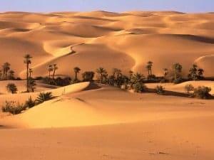 desiertos aridos