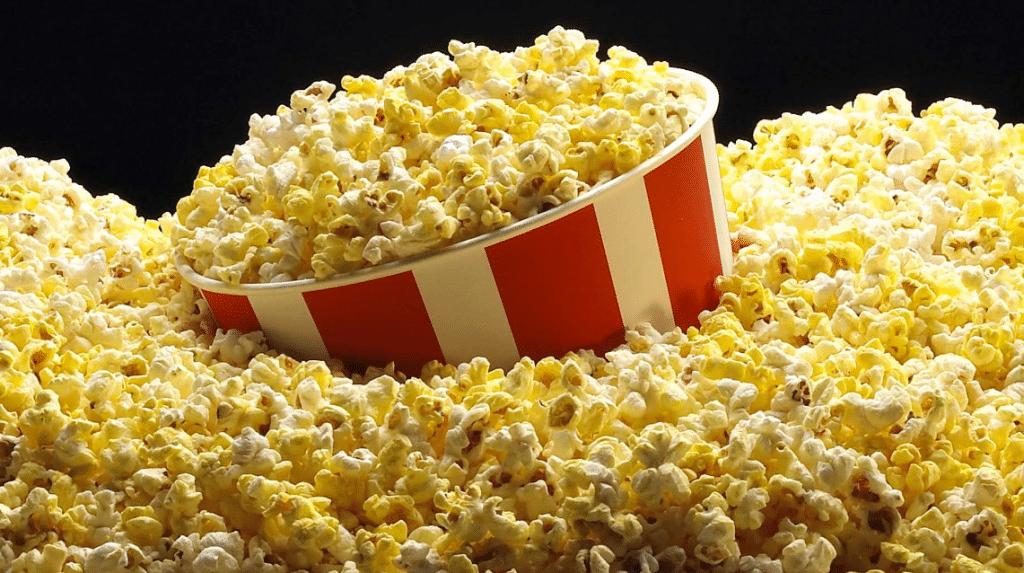 maiz palomero