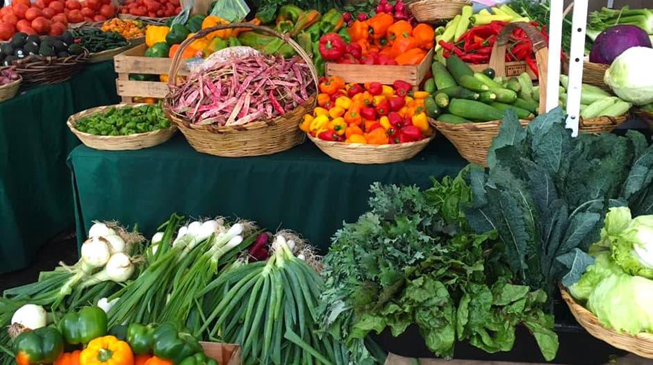 organico y natural