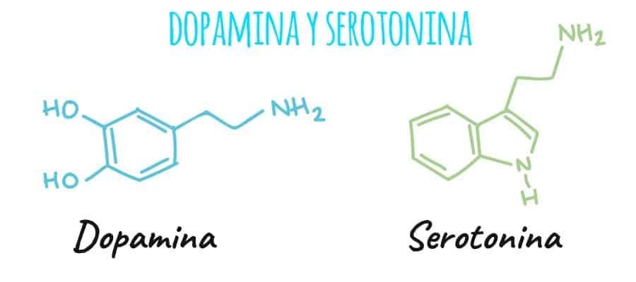 Diferencia entre dopamina y serotonina